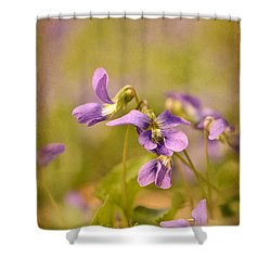 Playful Wild Violets Shower Curtain by Lois Bryan