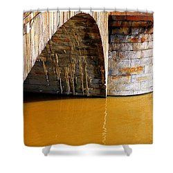 Po River Waters Shower Curtain by Valentino Visentini