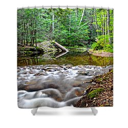Poetic Side Of Nature Shower Curtain by Frozen in Time Fine Art Photography