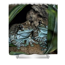 Poisonous Frogs With Sticky Feet Shower Curtain by Thomas Woolworth