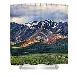 Polychrome Shower Curtain by Heather Applegate