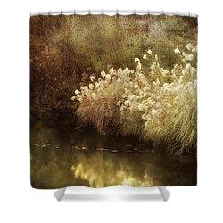 Pond's Edge Shower Curtain by Julie Palencia