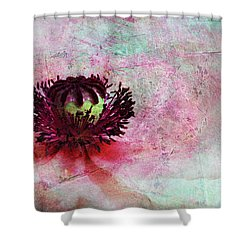 Power Of Poppy Shower Curtain by Claudia Moeckel
