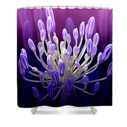 Praise Shower Curtain by Holly Kempe