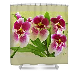 Pretty Faces - Orchid Shower Curtain by Ben and Raisa Gertsberg