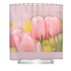 Pretty Pastel Pink Tulip Flowers Shower Curtain by Jennie Marie Schell