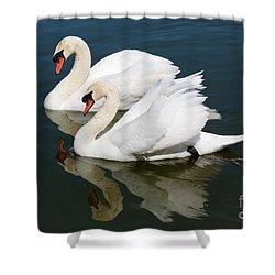 Pretty Swan Pair Shower Curtain by Carol Groenen