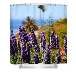 Pride Of Madeira Flowers In Orange County California Shower Curtain by Paul Velgos
