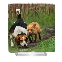 Probably The World's Worst Hunting Dog Shower Curtain by Mircea Costina Photography