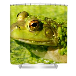 Profiling Frog Shower Curtain by Optical Playground By MP Ray