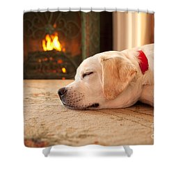 Puppy Sleeping By A Fireplace Shower Curtain by Diane Diederich