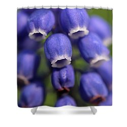 Purple Bells Shower Curtain by Juergen Roth