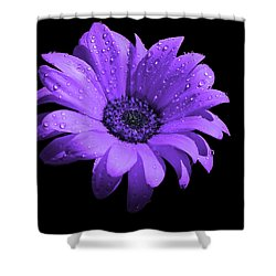 Purple Flower With Rain Shower Curtain by Bruce Nutting