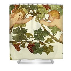 Putti Frolicking In A Vineyard Shower Curtain by Phoebe Anna Traquair