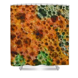 Quantum Life Shower Curtain by Dan Sproul