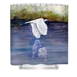 Quiet Flight Shower Curtain by Loretta Luglio