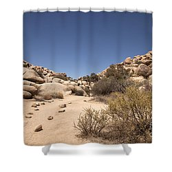 Quiet Time Shower Curtain by Amanda Barcon