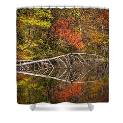 Quiet Waters In Autumn Shower Curtain by Debra and Dave Vanderlaan