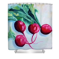 Radishes Shower Curtain by Todd Bandy