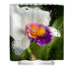 Rainy Day Orchid - Botanical Art By Sharon Cummings Shower Curtain by Sharon Cummings
