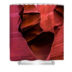 Rattlesnake Heart Shower Curtain by Chad Dutson