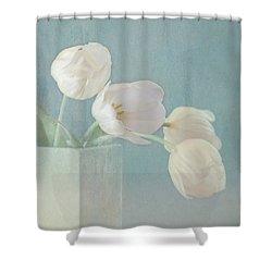 Ray Of Beauty Shower Curtain by Kim Hojnacki