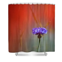 Red And Blue Shower Curtain by Heiko Koehrer-Wagner