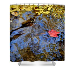 Red Blue And Gold Shower Curtain by Frozen in Time Fine Art Photography