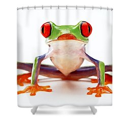 Red-eye Tree Frog 2 Shower Curtain by Lanjee Chee