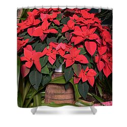 Red Poinsettia Shower Curtain by Kathleen Struckle