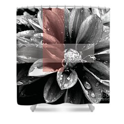 Red Rain Blossom Shower Curtain by Jamie Lynn