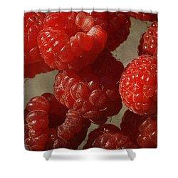 Red Raspberries Shower Curtain by Cindi Ressler