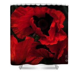 Red Ruffles Shower Curtain by Kathleen Struckle