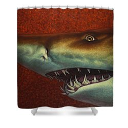 Red Sea Shark Shower Curtain by James W Johnson