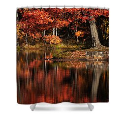 Red Tree Shower Curtain by Karol Livote