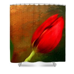 Red Tulips Triptych Section 3 Shower Curtain by Lourry Legarde