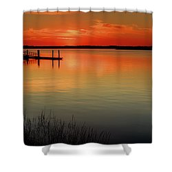 Red Water Shower Curtain by Phill Doherty