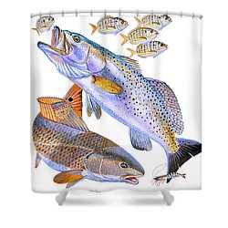 Redfish Trout Shower Curtain by Carey Chen