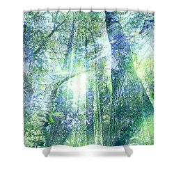 Redwood Dreams Shower Curtain by Nicole Swanger