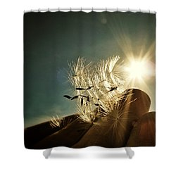 Reflection Of The Sun Shower Curtain by Marianna Mills