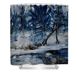 Reflections Of Winter Shower Curtain by Xueling Zou