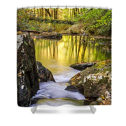 Reflective Pools Shower Curtain by Debra and Dave Vanderlaan