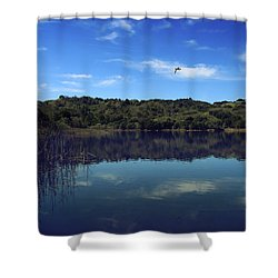 Regardless Of The Blues Shower Curtain by Laurie Search
