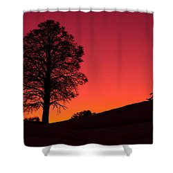 Reminiscing Shower Curtain by Chad Dutson