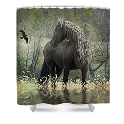 Remme And The Crow Shower Curtain by Fran J Scott