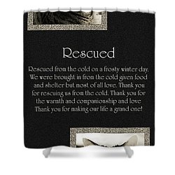 Rescued Shower Curtain by Andee Design