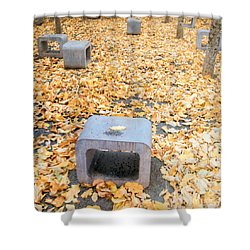 rest in fall IV Shower Curtain by Hannes Cmarits
