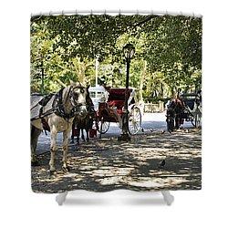 Rest Stop - Central Park Shower Curtain by Madeline Ellis