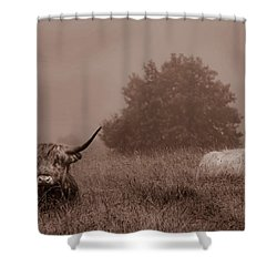 Resting Beasts Shower Curtain by Linsey Williams