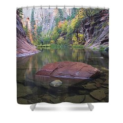 Revisited Shower Curtain by Peter Coskun